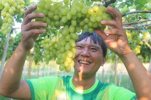 11 đặc sản nổi tiếng Ninh Thuận mà đừng nên bỏ lỡ